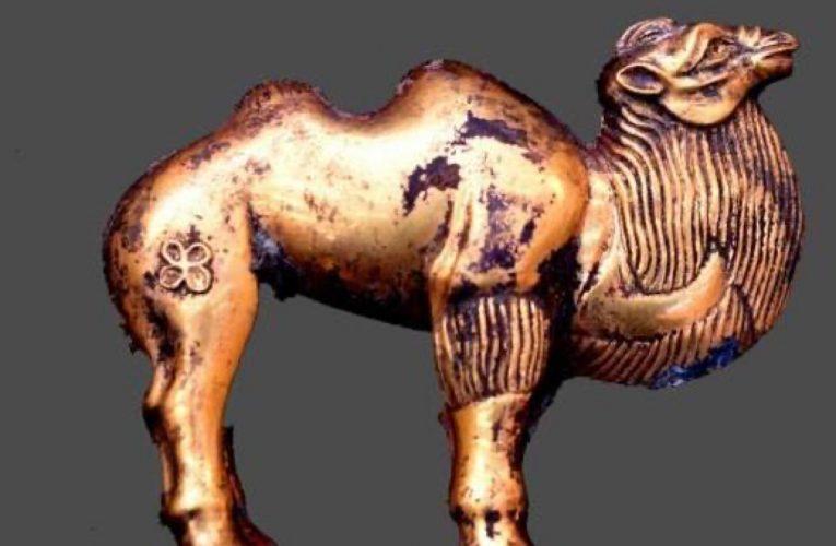 [文化] 秦始皇陵陵西出土珍貴單體金駱駝